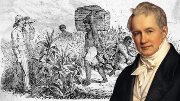 Portrait of Humboldt by Joseph Stieler, on a representation of a tobacco plantation in Cuba worked by slaves in 1840